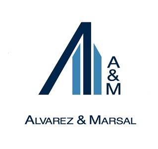 mena website logo partner 2019 - 10 Alvarez & Marsal